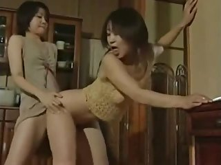 Japanese Bull dyke lick